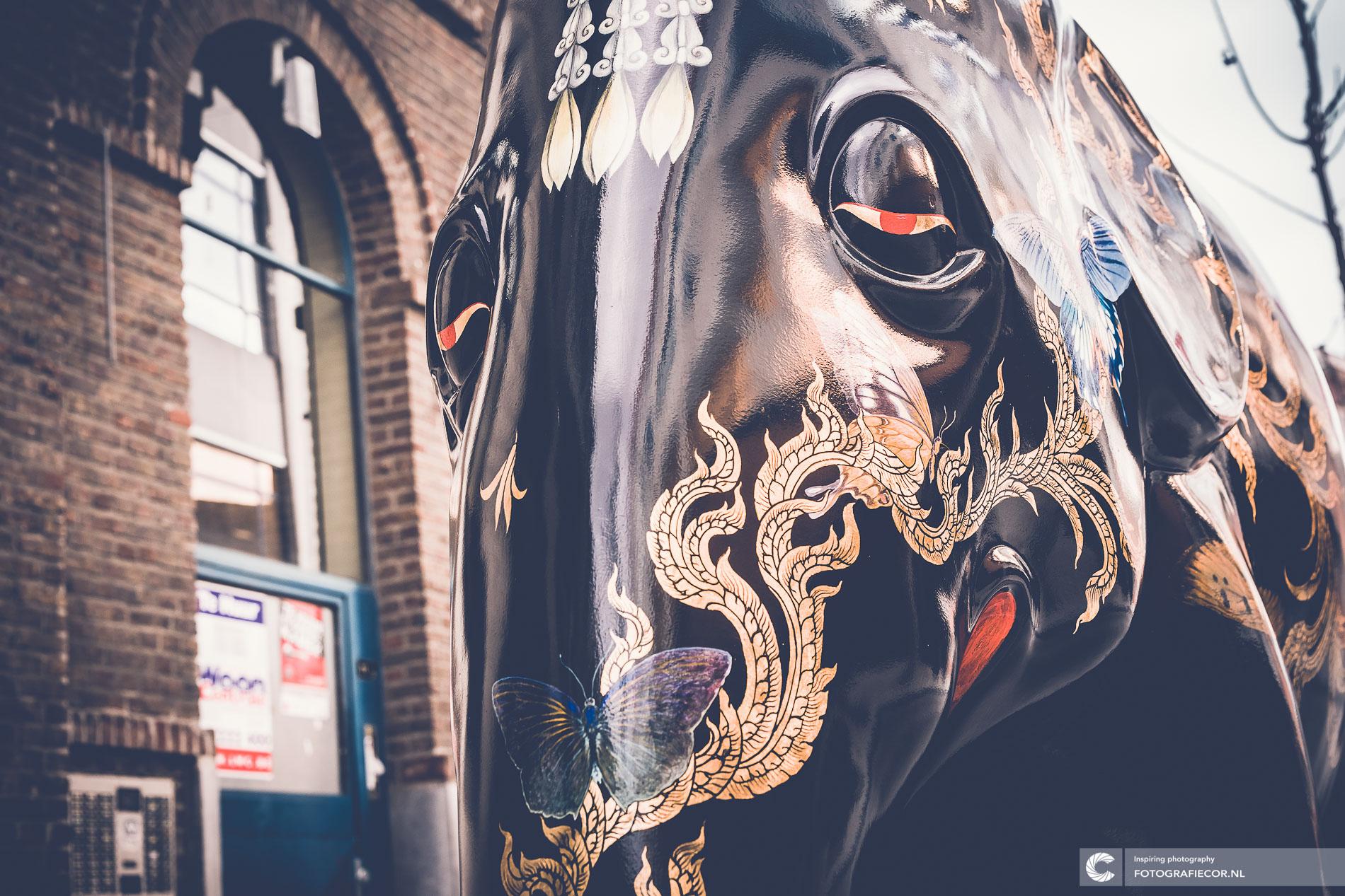 Elephant | bedrijfsfotografie | olifanten | kunst | evenement | stad | buisiness