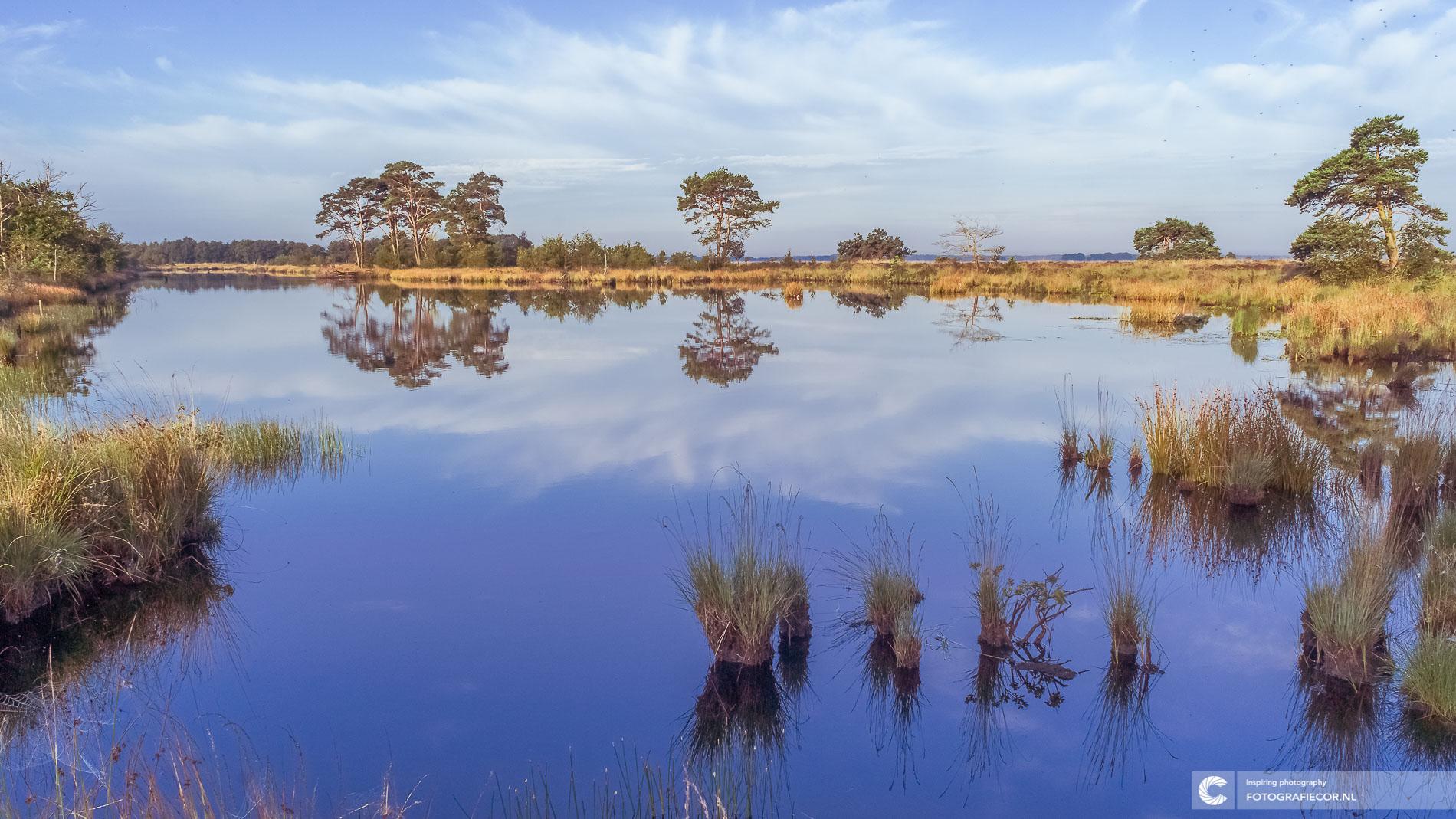 Dwingelderveld | spiegelend ochtendgloren| Natuurfotograaf | Nederland