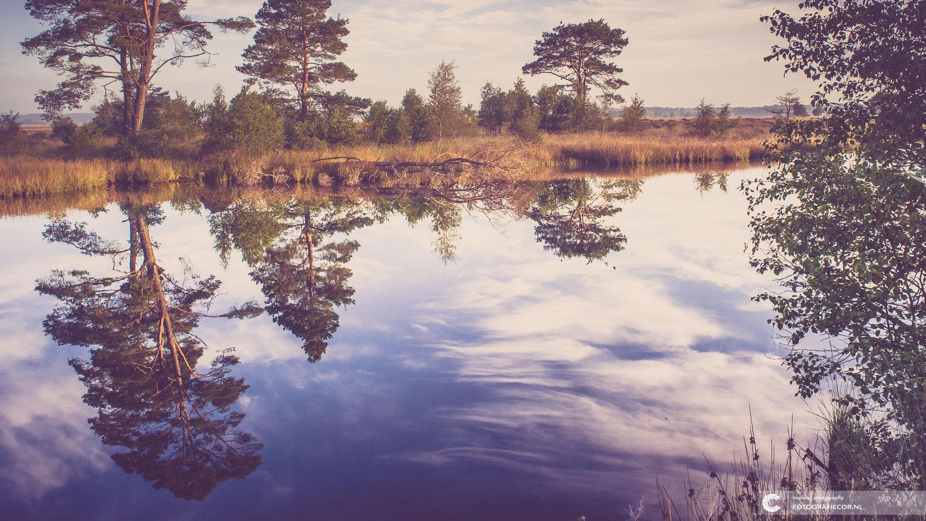 Dwingelderveld | Spiegelend water | Natuurfotograaf | Nederland