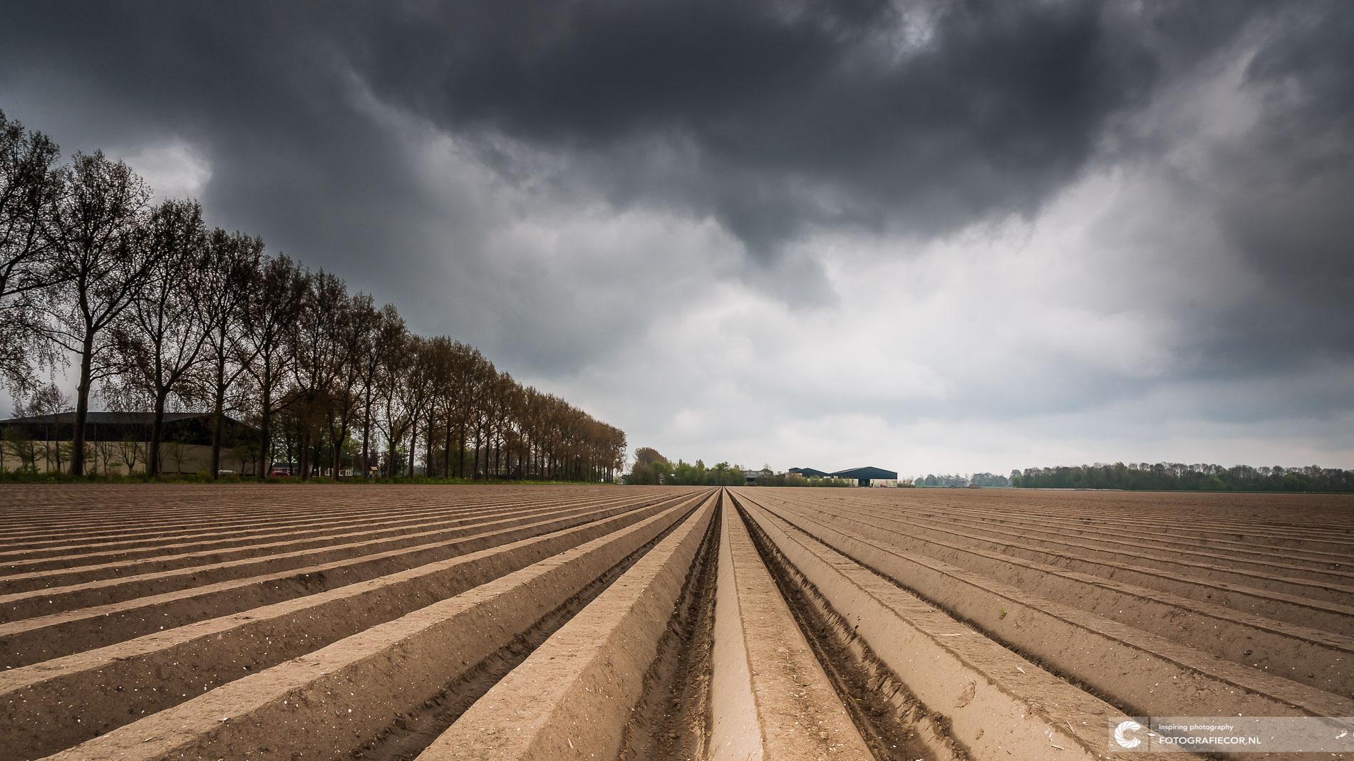 Donkere wolken boven aardappelveld Polder | Landschapsfotograaf