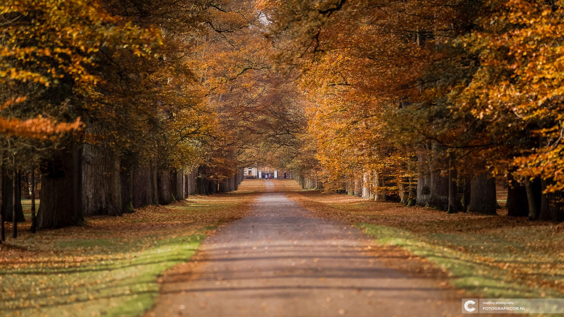 Herfstlandschap Apeldoorn, Paleis 't Loo | Landschapsfotograaf