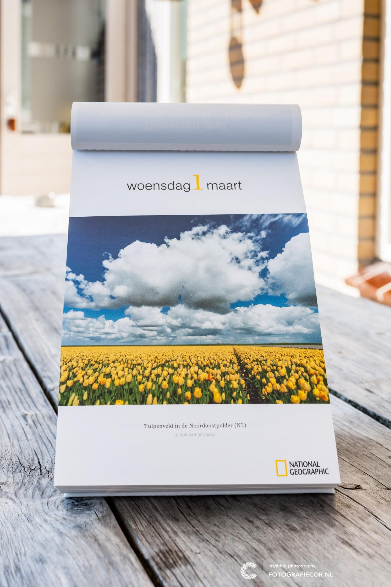 National geographic | Fotograaf | Kampen | Noordoostpolder | Tulpen | Landschap