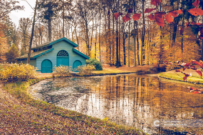 'T Loo | Apeldoorn | herfstfoto's maken | Park | Boothuis | Architectuur | Bomen | Takken | herfstkleuren | seizoen | natuur | Macro