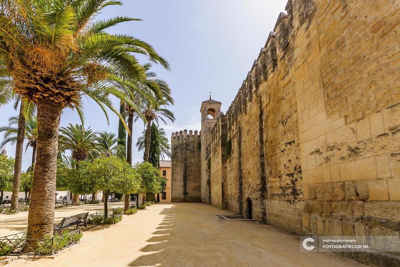 Andalucia Spanje   Andalusie   bezienswaardigheden   Cordoba   mezquita   córdoba   reizen Spanje   rondreis Spanje   Alcazar   stedentrip   zuiden van Spanje   Columbus