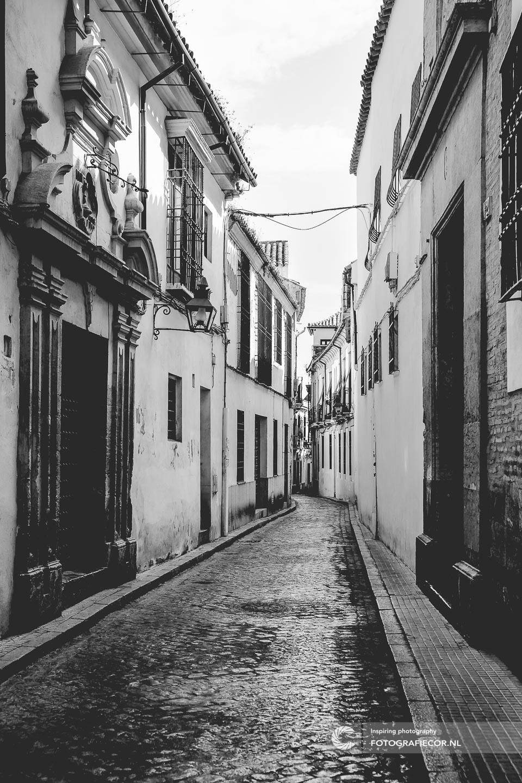 Pueblos Blancos   Andalucia Spanje   Andalusie   bezienswaardigheden   Cordoba   mezquita   córdoba   reizen Spanje   rondreis Spanje   rondreizen Spanje   stedentrip   zuiden van Spanje   Architectuur   Mooren