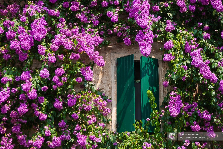 Sirmione | Italie | Gardameer | Bloemen | Lago di Garda | Noord Italië | Alpen | Italiaanse meren | raam | luiken