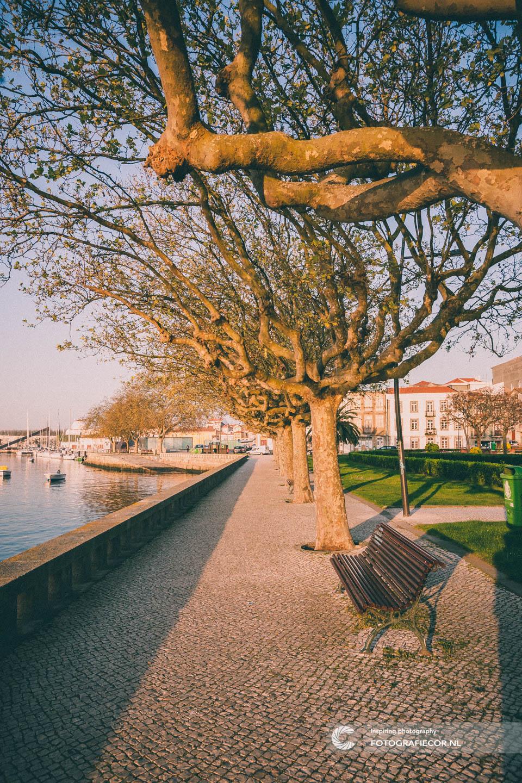 Boulevard | fotografie tips | porto | bezienswaardigheden | Portugal | reisfotografie | stedentrip