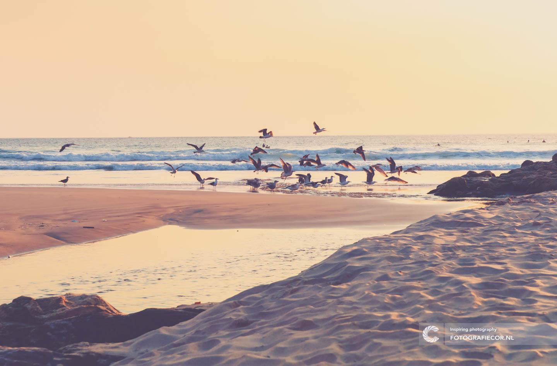 Strand | zonsondergang | Atlantische kust | Citytrip porto | fotografie tips | porto | bezienswaardigheden | Portugal | reisfotografie | stedentrip