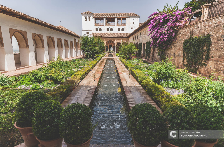 Tuin | Fontein | Sierra Nevada | Alhambra Granada | Andalusie | bezienswaardigheden | Generalife | Granada | Nasrid | Palace | Spanje | Zuid Spanje | Architectuur