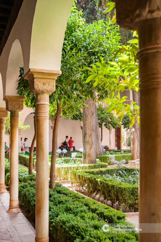 Garden | Alhambra Granada | Andalusie | bezienswaardigheden | Granada | Nasrid | Palace | Spanje | Zuiden