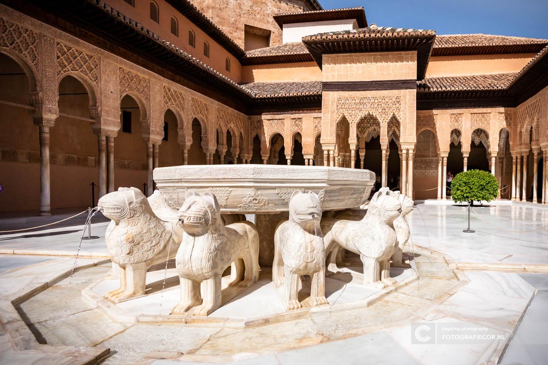Patio de los Leones | Fontein | Arabesque | Alhambra Granada | Andalusie | bezienswaardigheden | Generalife | Granada | Nasrid | Palace | Spanje | Zuid Spanje | Architectuur