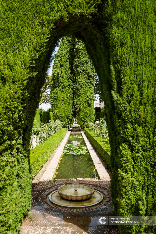 Tuin | fontein | garden | Alhambra Granada | Andalusie | bezienswaardigheden | Generalife | Granada | Nasrid | Palace | Spanje | Zuid Spanje |