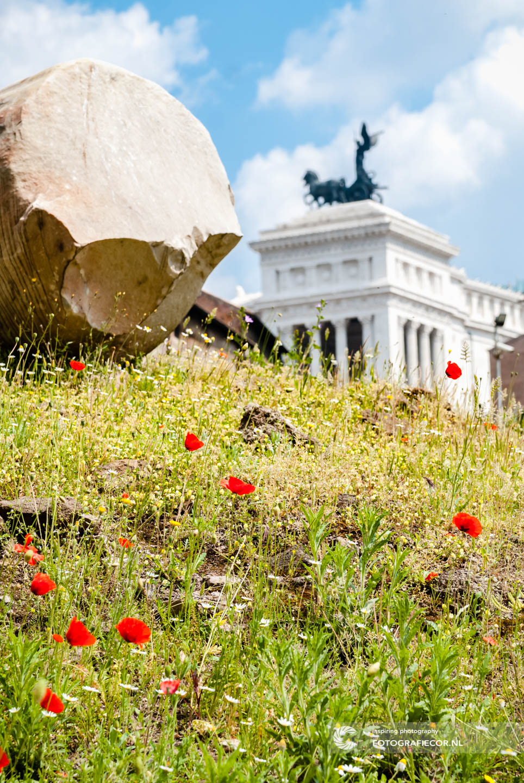 Teatro Marcello | Monument Van Victor Emanuel II | Klaprozen | Centrum | Rome | Italie | Citytrip