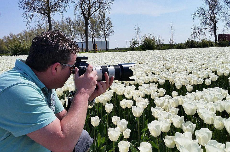 Beste tulpen foto van het jaar, en de winnaar is...