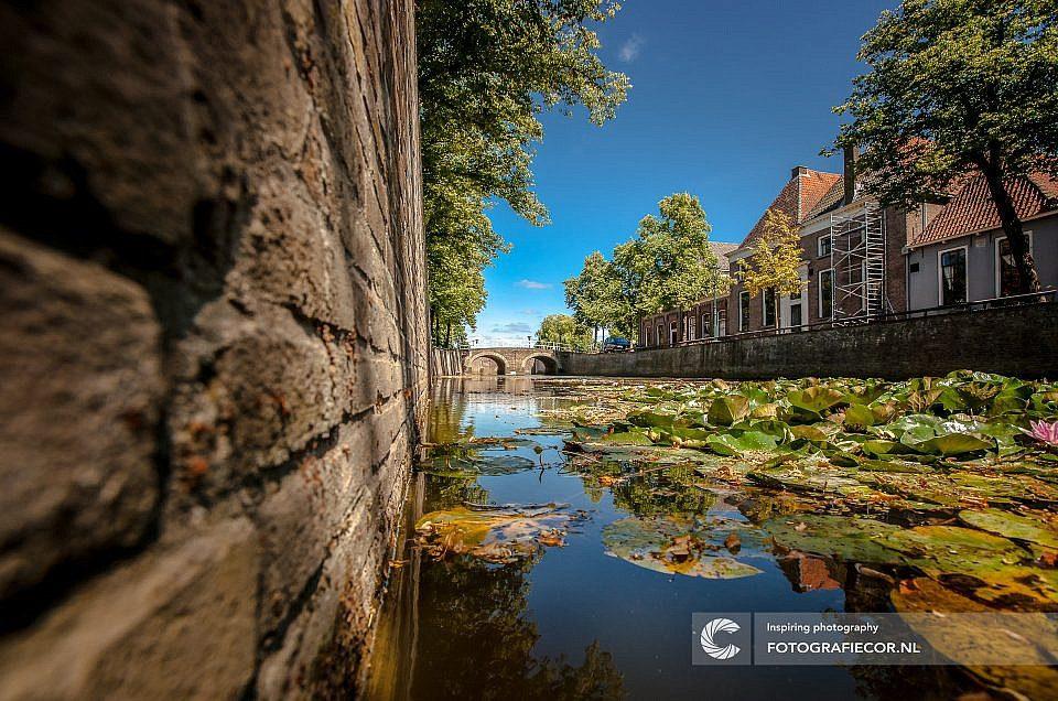 Genomineerd voor de grootste fotowedstrijd van Nederland