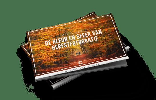 herfstfotografie | fotocursus | herfst | workshop